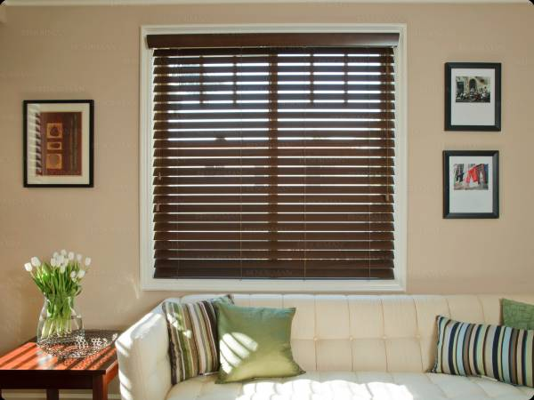 Smart Privacy Blinds 5 Custom Window Treatments Woven