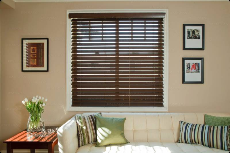 Smart privacy blinds 4 custom window treatments woven for Smart window shades